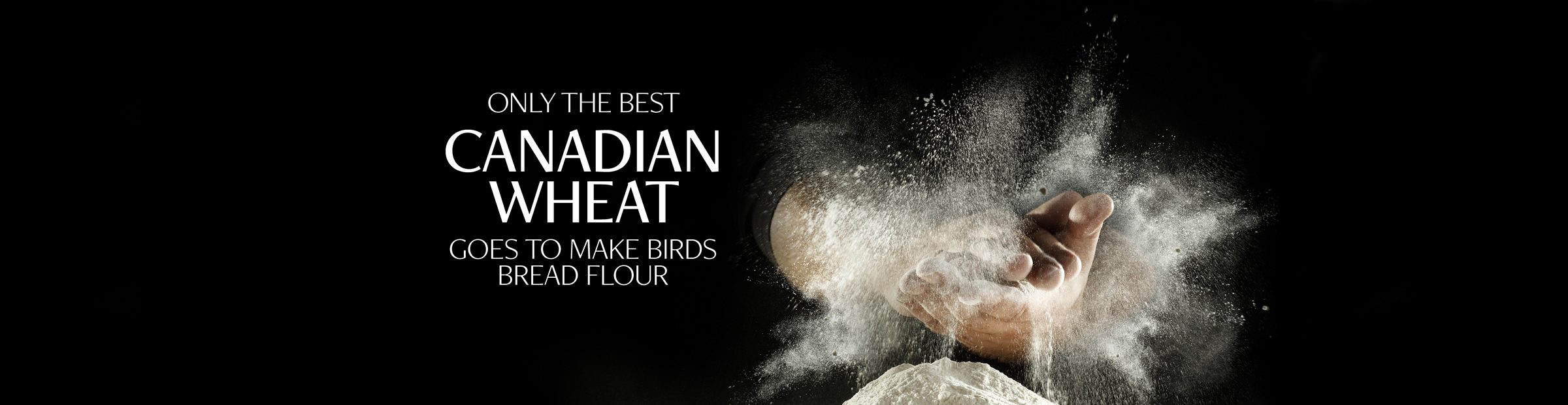 Only the best Canadian wheat goes to make Birds bread flour
